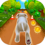 Pet Run APK