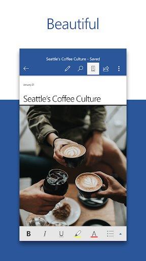 Microsoft Word screenshot 1