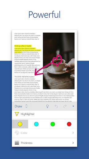 Microsoft Word screenshot 2
